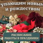 Домотехника поздравляет всех посетителей магазина с наступающим Новым годом!